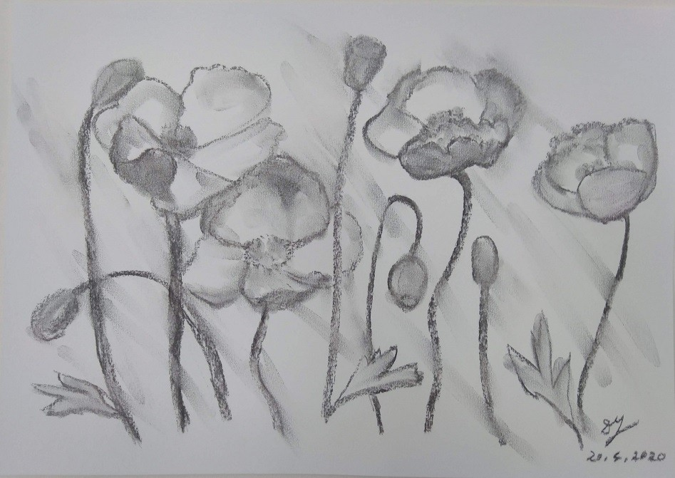 Poppies Dancing