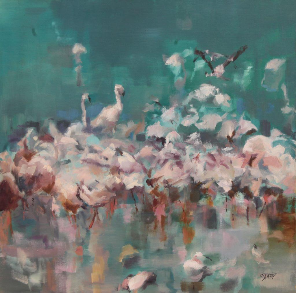 Flamingos-QMYbg-JnI_U