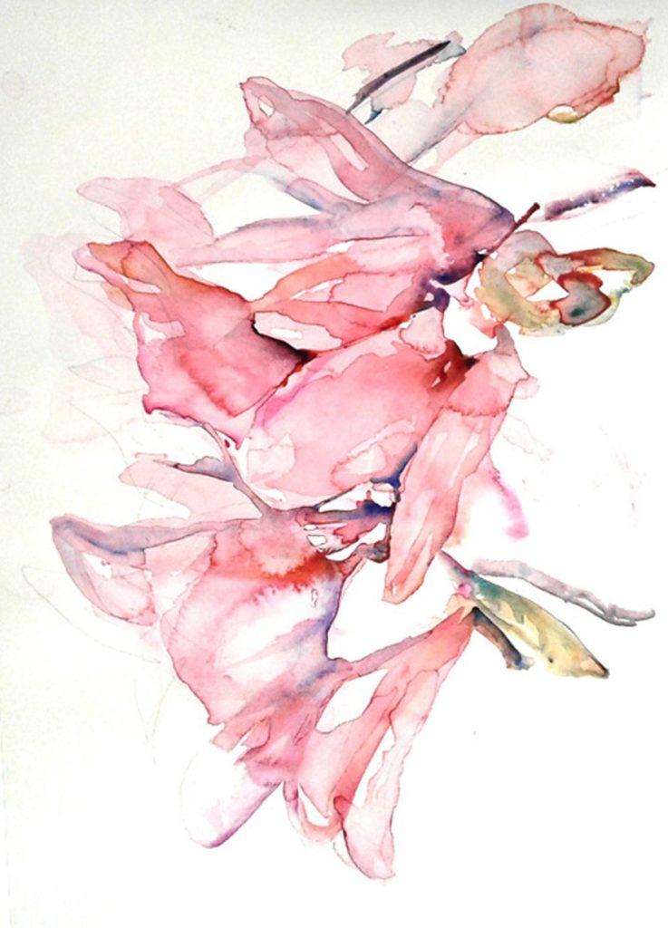 Magnolia Blossom 1000-XF9ad