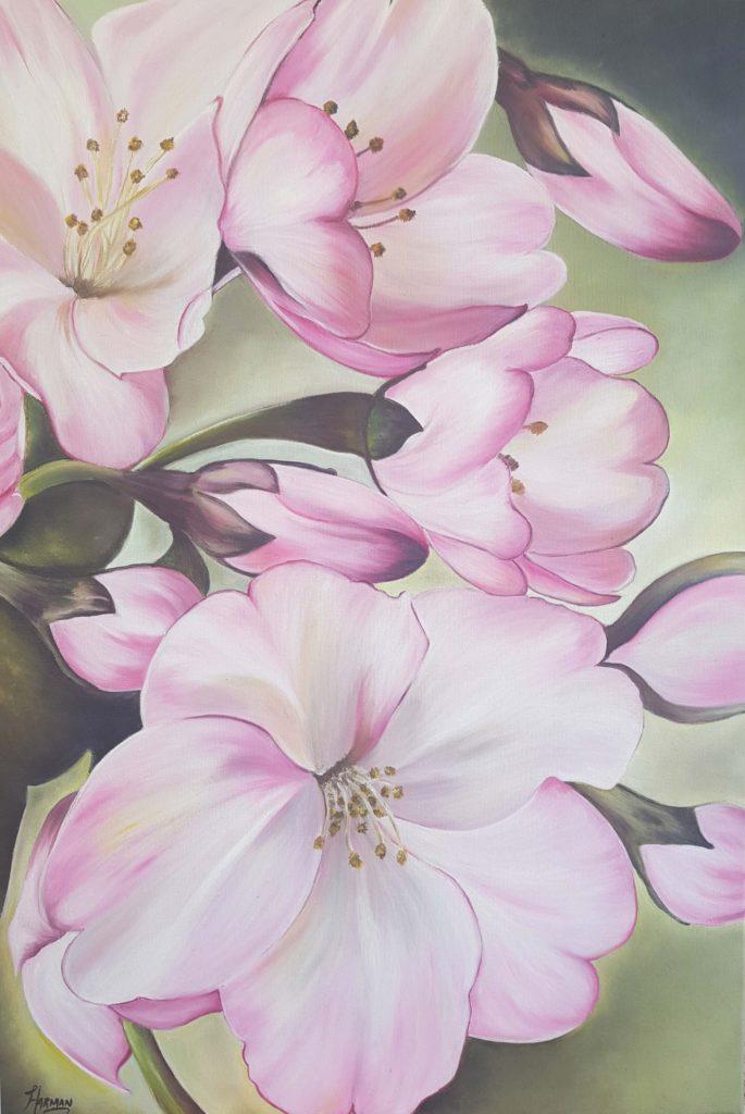 Pink Beauty-7YQZm