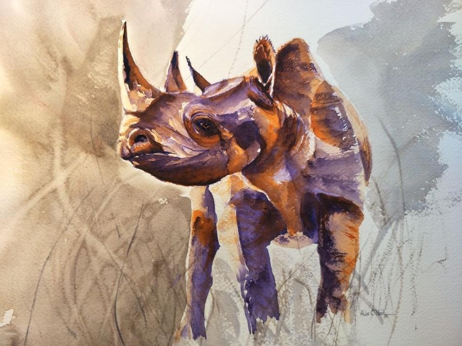 Rhino-1-Ww0h1-loVmf